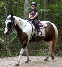 Little Girl Riding Paint Horse