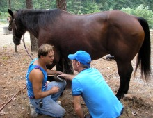 Lesson on Hoof Care