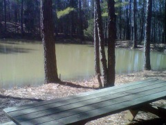 Private Picnic Table at the Pond